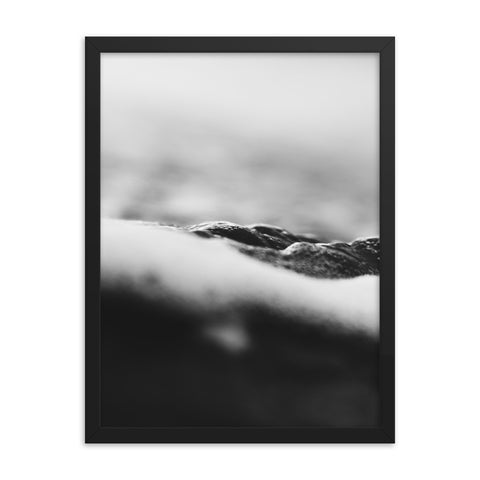 Rough Watters Black & White Framed poster