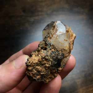 "Unique Earth Oddity - Manganese Covered Quartz Crystal Cluster shaped like a ""Fish Creature"""