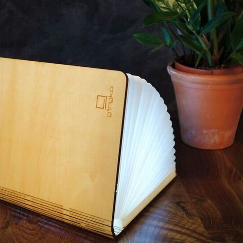 LED Smart Book Light - Gingko Electronics