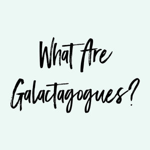 What Are Galactagogues?