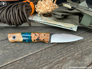 Fiddleback Forge Bear Cub - Belize Shokwood - Fiddleback Forge Handmade Knife