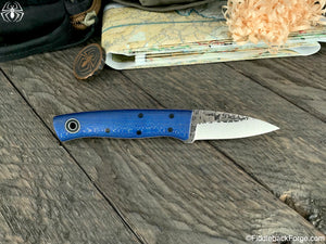 Fiddleback Forge ED Karda - Blue Sycamore - Fiddleback Forge Handmade Knife