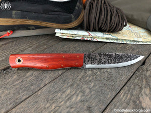Fiddleback Forge Terrasaur - Bloodwood - SCANDI - Fiddleback Forge Handmade Knife