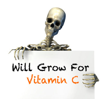 Vitamin C For Bone Health?