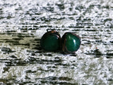 chrysoprase earrings ~ electroformed