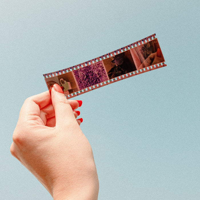 35mm Film Strip Scanning