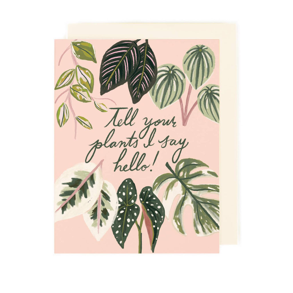 Hello Introvert Plant Card