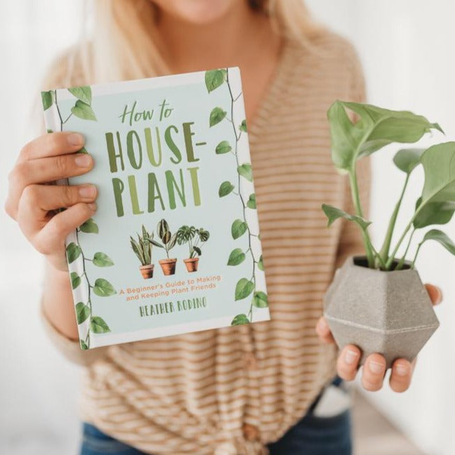 How to Houseplant