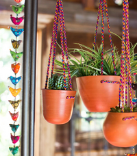 Cup Hanging Planter