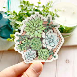 Watercolor Succulent Planter 3x3in.