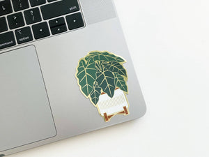 Alocasia Sticker