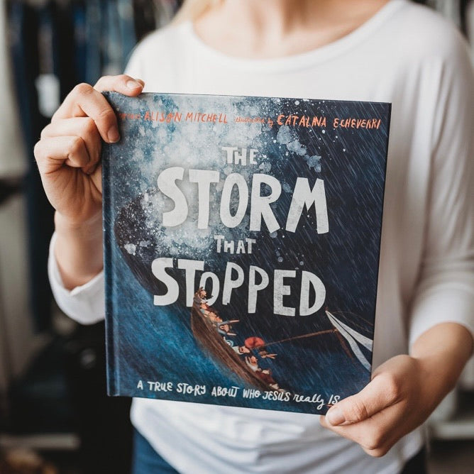 The Storm That Stopped Book