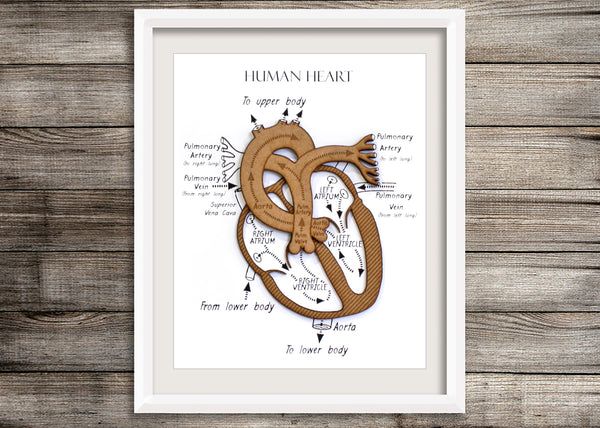 Heart Wall Art, Doctor Nurse gift