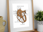 anatomy art, human heart art, doctor gift