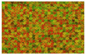 All Flowers 500 Piece Jigsaw Puzzle