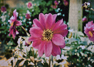 Pink Flower Imperfect Petal Jigsaw
