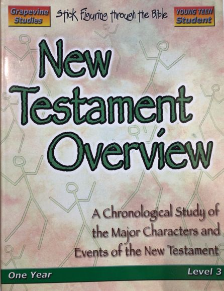 New Testament Overview Young Teen Student