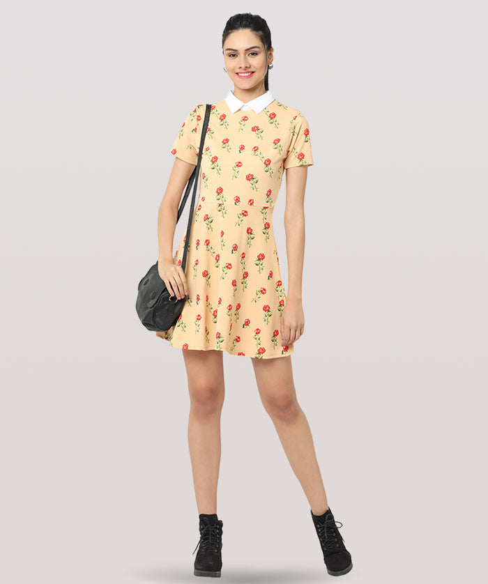 The Fun And Trendy Dress