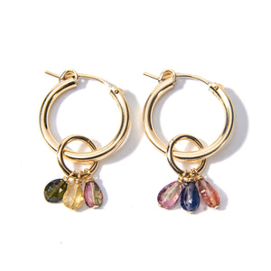 Tourmaline Charm Earrings
