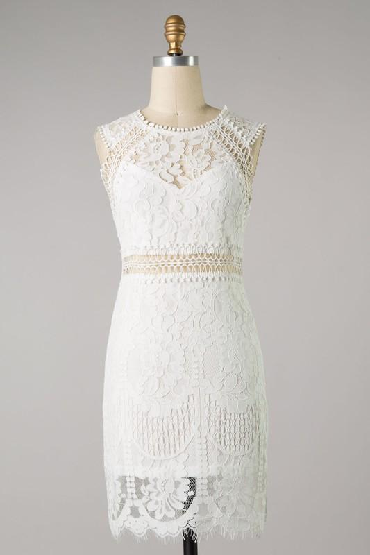 Lace Sheer Fitted Woven Dress - Johnathan Michael's Boutique