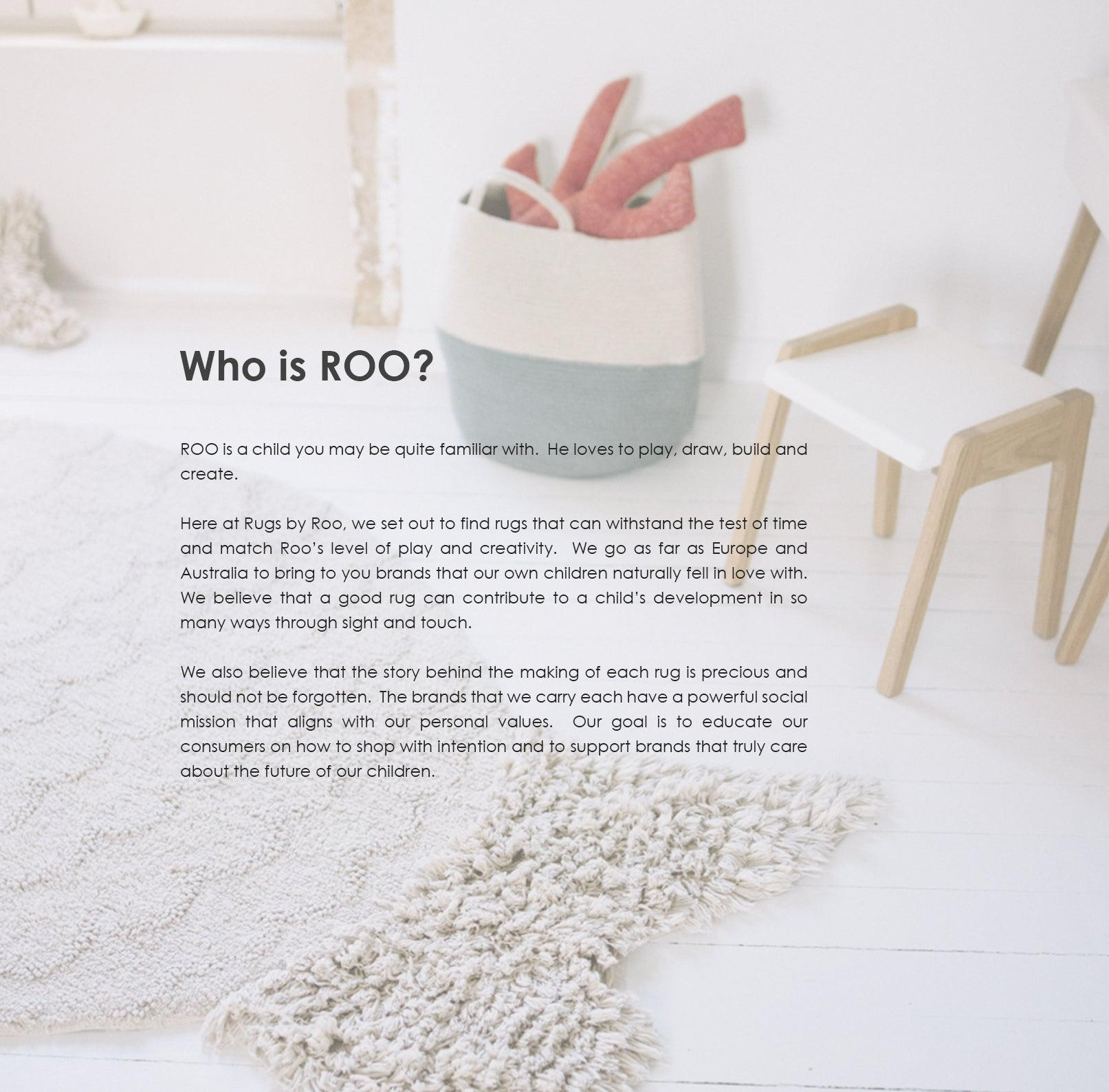 Who is Roo?  Roo is a child who is playful, imaginative and energetic.
