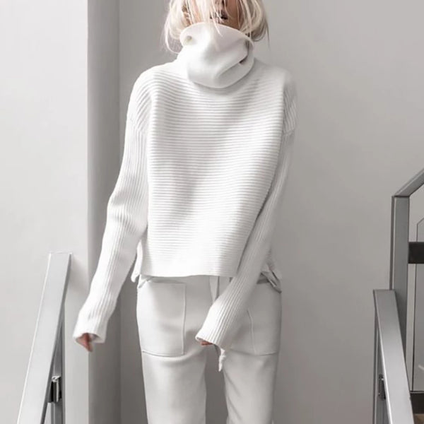Brief High Collar Long Sleeve Pure Colour Loose Sweater