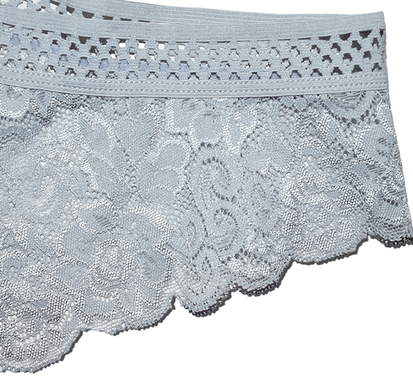 Women Lace Net Hollow Breifs Panties