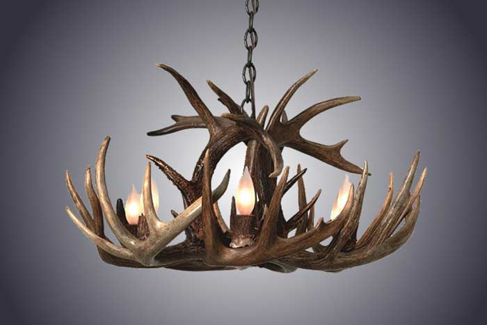 4 Light Whitetail Antler Chandelier