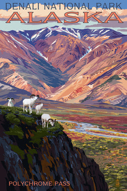 Denali National Park Postcard, Alaska. Polychrome Pass view with rams