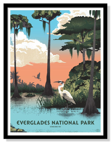 Everglades National Park Poster - 18