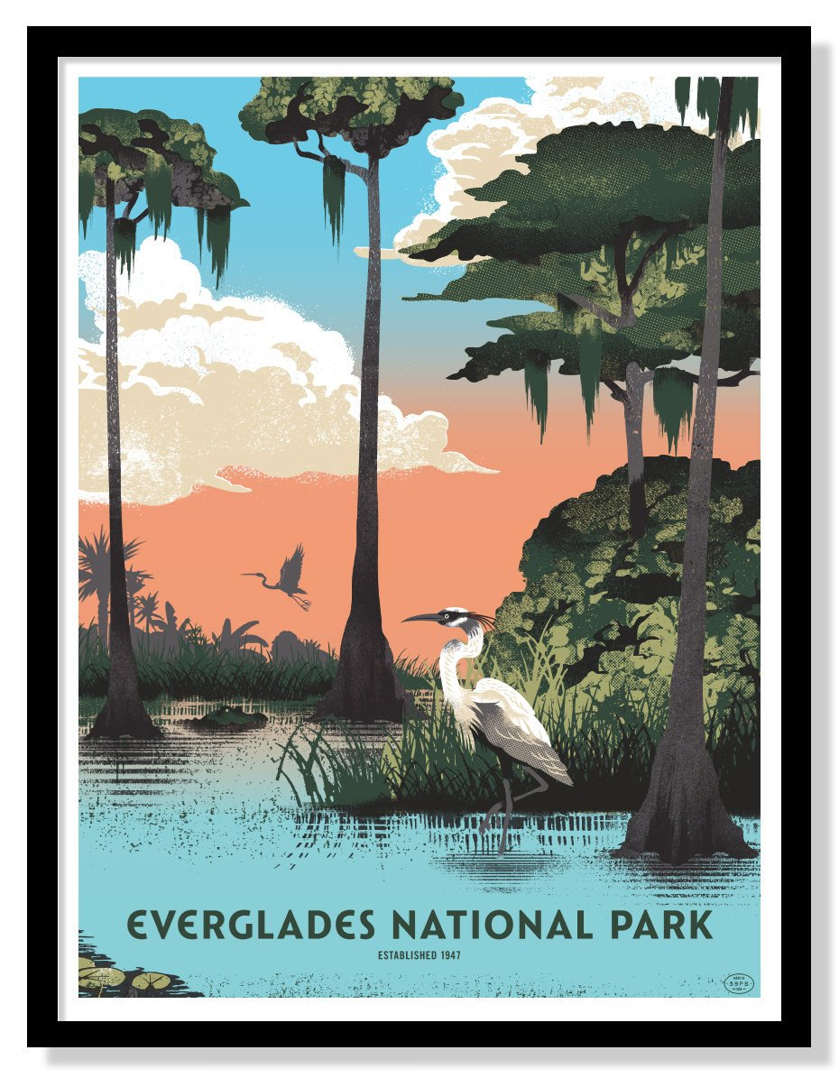 Everglades National Park Poster 18 X 24 Us Park Pass