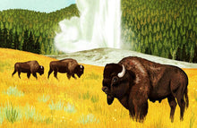 "Load image into Gallery viewer, Yellowstone National Park Poster - 18"" x 24"""