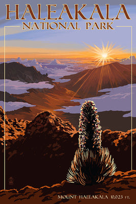 Haleakala National Park postcard, Hawaii. Elevation 10,023 ft sunrise view