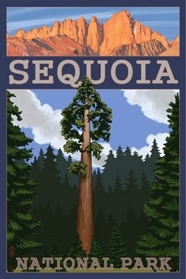 A Sequoia tree and Palisades appear in a postcard of Sequoia National Park, Northern California