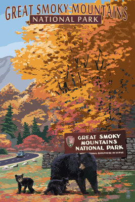 Great Smoky Mountains National Park, Tennessee & North Carolina. Park entrance and bear family postcard