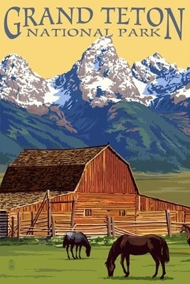 Grand Teton National Park postcard, Wyoming. John Moulton barn and Teton range view