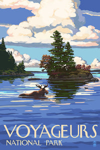 A moose swims amongst the islands of Voyageurs National Park, Minnesota. postcard