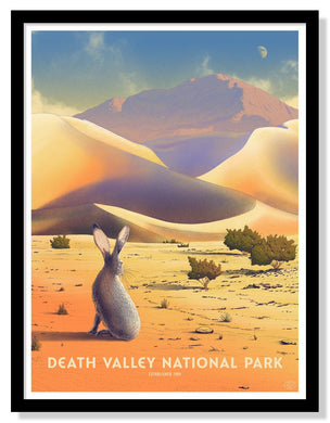 Death Valley National Park Poster - 18