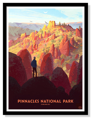 Pinnacles National Park Poster - 18