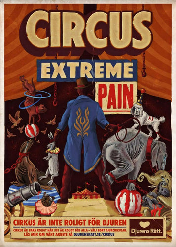 Circus extreme pain