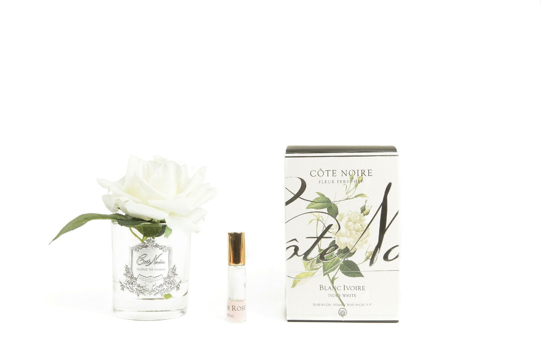 COTE NOIR Single White Rose in Clear Vase