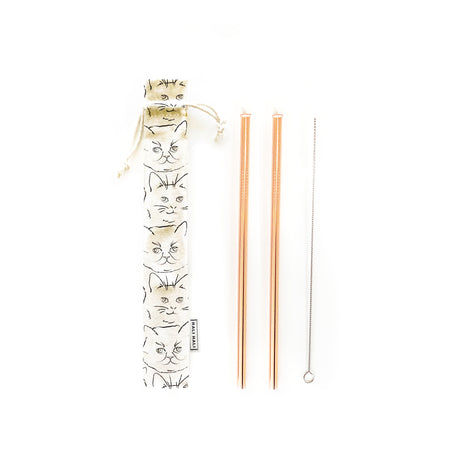 Reusable Straws 4 piece Set - Kitty
