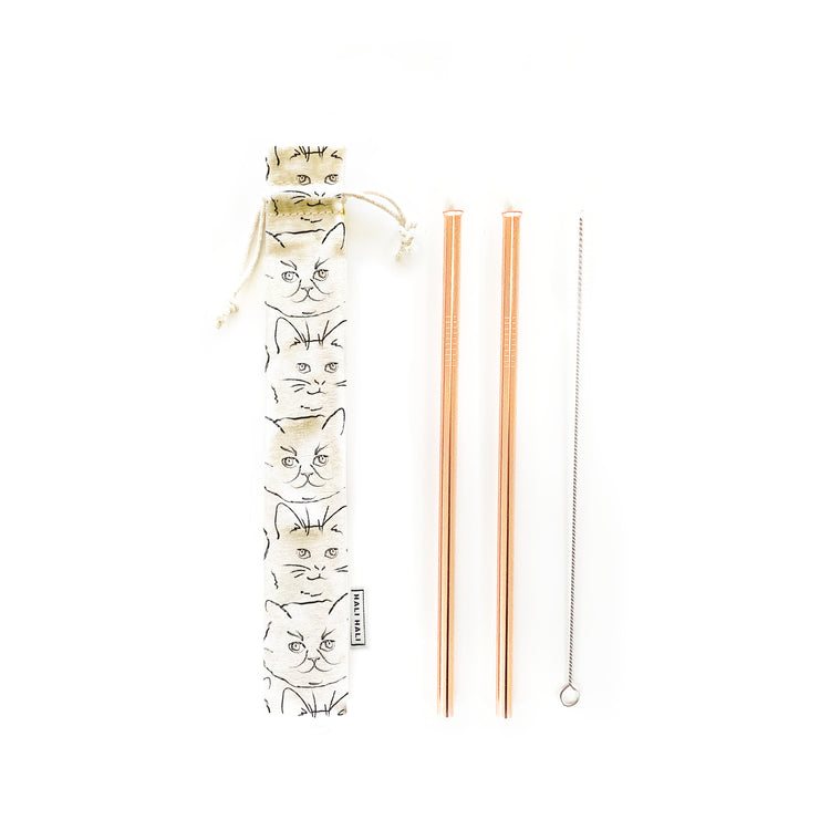 NEW! Reusable Straws 4 piece Set - Kitty