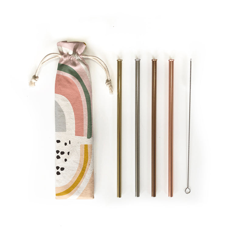 Reusable Straws 6 piece Set - Prism