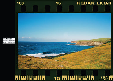 Coastal Collected Negatives