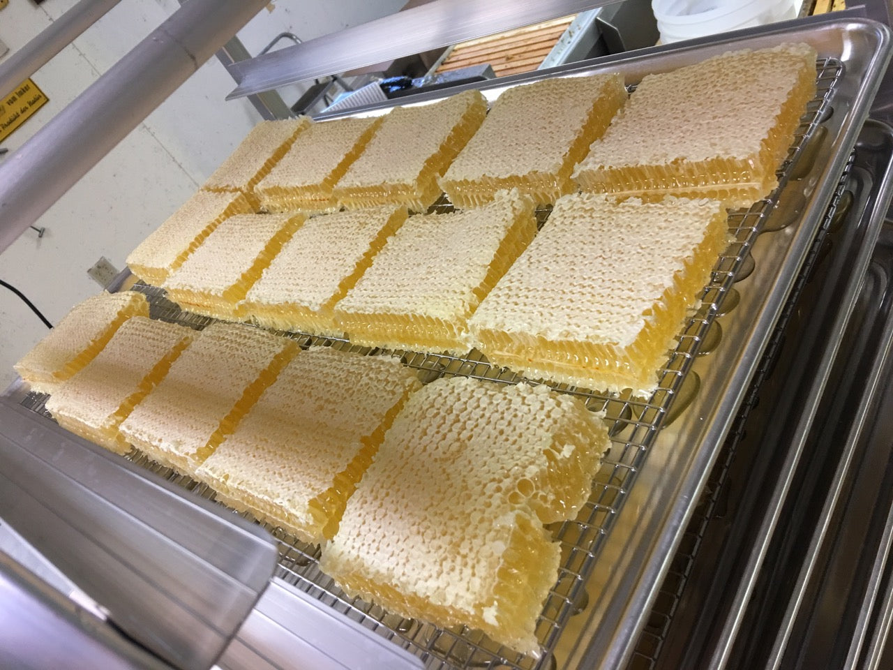 Delicious Comb Honey!