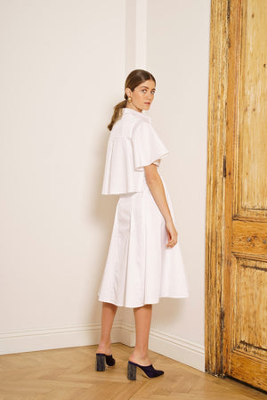 The Shirtdress
