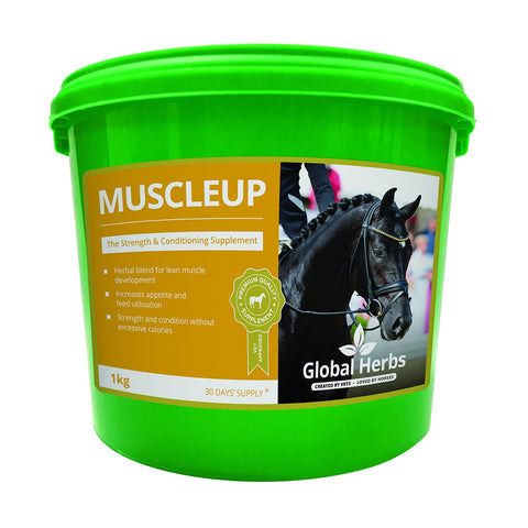 Muscle Up (1kg) - Global Herbs
