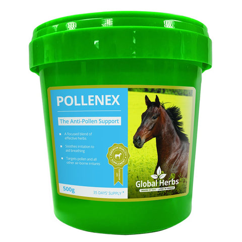 Image of PolleneX (500g) - Global Herbs