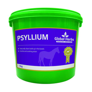 Psyllium (1kg) - Global Herbs